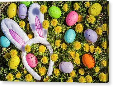 Canvas Print featuring the photograph Easter Bunny Ears by Teri Virbickis