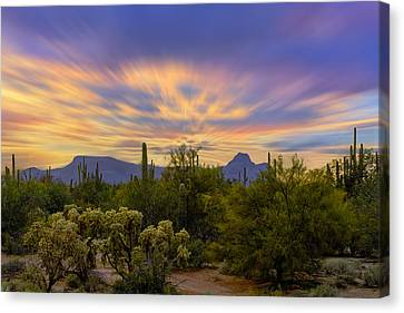 Easter Sunset H18 Canvas Print