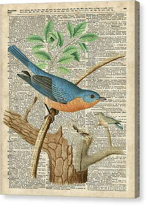 Eastern Blue Birds Canvas Print by Jacob Kuch
