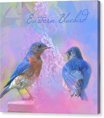 Canvas Print featuring the photograph Eastern Bluebirds Watercolor Photo by Heidi Hermes