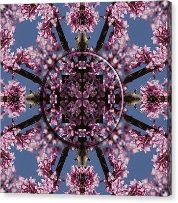 Eastern Red Bud Mandala Canvas Print by Alan Skonieczny
