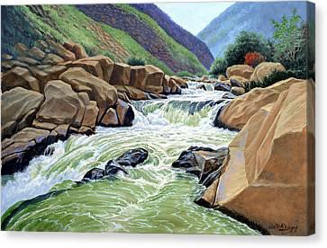 Eastern Sierra Stream Canvas Print by Paul Krapf