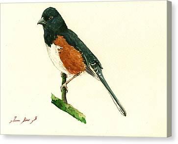 Eastern Towhee Bird Canvas Print by Juan  Bosco
