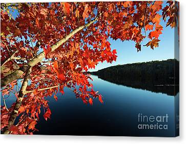 Eastman Pond Grantham New Hampshire October Canvas Print
