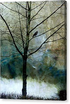 Eastward Canvas Print by Carol Leigh