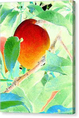 Eat A Peach Canvas Print by Louis Nugent