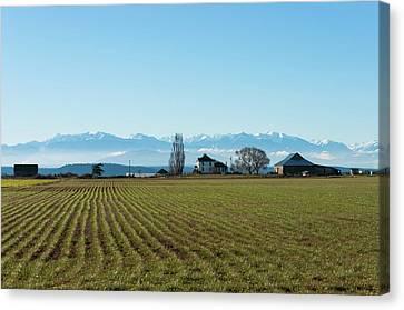 Ebey Spring Canvas Print