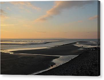 Canvas Print featuring the photograph Echo by Harry Robertson