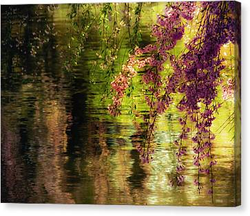 Cherry Blossoms Canvas Print - Echoes Of Monet - Cherry Blossoms Over A Pond - Brooklyn Botanic Garden by Vivienne Gucwa