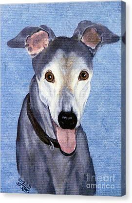 Eddie - Greyhound Canvas Print by Terri Mills