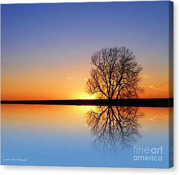 Edge Of Light Canvas Print