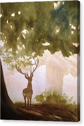 Edge Of The Forrest Canvas Print by Marilyn Jacobson