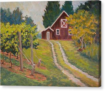 Edge Of The Vineyard Canvas Print by Keith Burgess