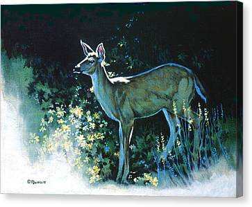 Edge Of The Wood Canvas Print by Richard De Wolfe