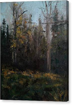 Edge Of The Woods #1 Canvas Print by Brian Kardell