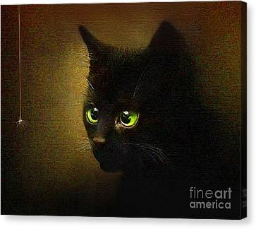 Eensy Weensy Canvas Print by Robert Foster