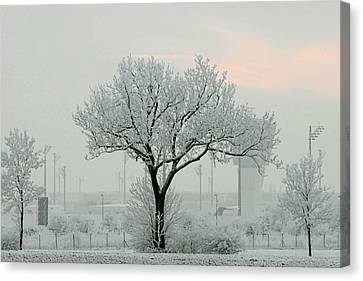 Eerie Days Canvas Print by Christine Till