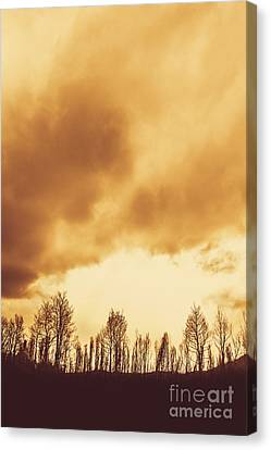 Eerie Fields In Silhouette Canvas Print by Jorgo Photography - Wall Art Gallery