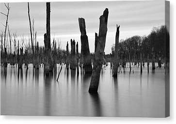 Eerie Lake Canvas Print by Jennifer Ancker