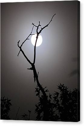 Canvas Print - Eerie Moon by Shane Brumfield