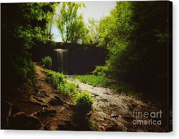 Canvas Print featuring the photograph Eerie Path At Wequiock Falls by Mark David Zahn