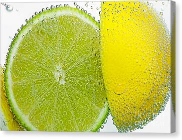 Effervescent Lime And Lemon By Kaye Menner Canvas Print