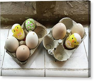 Eggs Decorated For Easter Canvas Print by Tom Gowanlock