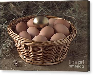 Eggs In Basket With A Golden One Canvas Print
