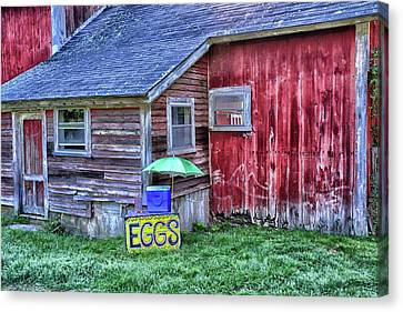 Farm Stand Canvas Print - Eggs by Mike Martin