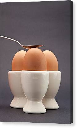 Eggs Canvas Print by Tom Gowanlock