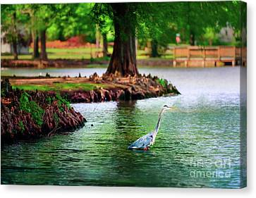 Canvas Print - Heron At Honor Heights by Tamyra Ayles