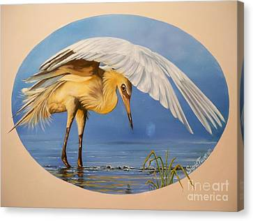 Egret Fishing Canvas Print by Sigrid Tune