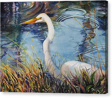Egret In Cameron Marsh Canvas Print by Sue Zimmermann