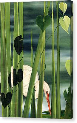 Egret In Reeds Canvas Print by Anne Beverley-Stamps