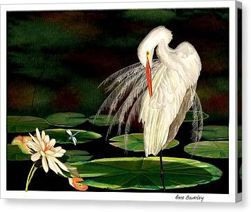 Canvas Print featuring the painting Egret Pruning In Lily Pads by Anne Beverley-Stamps