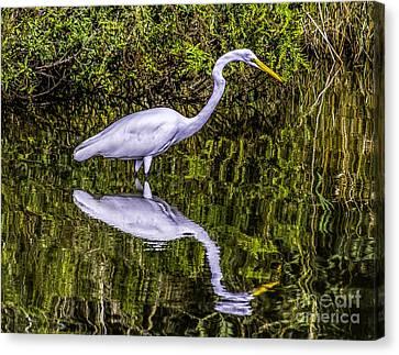 Egret Reflection Canvas Print by Nick Zelinsky