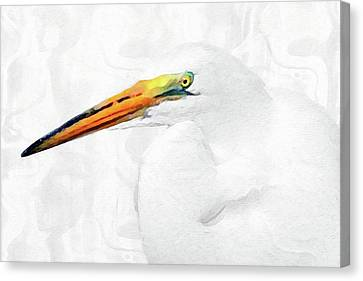 Egret Thoughts 2 Canvas Print