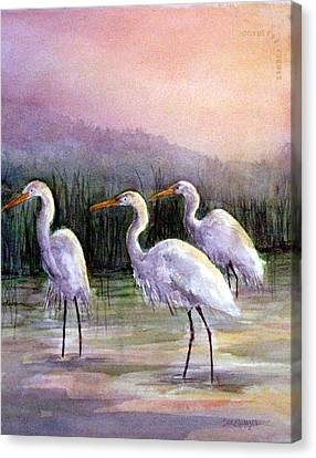 Egrets At Sunset Canvas Print by Suzanne Krueger