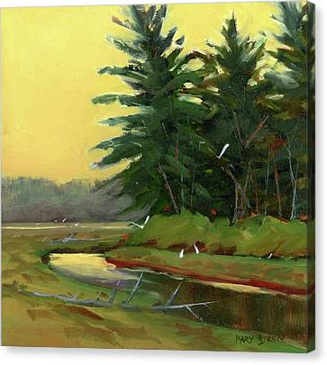 Egrets In The Marsh Canvas Print by Mary Byrom