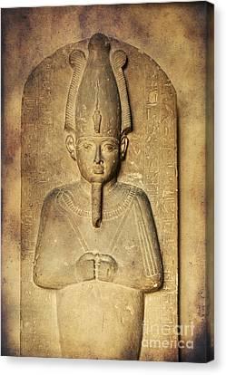 Egyptian Pharaoh. Canvas Print by Mohamed Elkhamisy