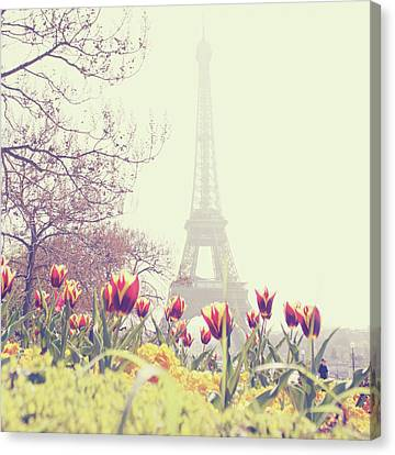 Weathered Canvas Print - Eiffel Tower With Tulips by Gabriela D Costa