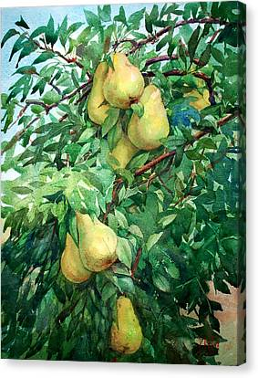 Eight Pears Canvas Print by Peter Sit