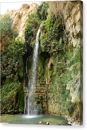 Ein Gedi Nature Reserve Canvas Print by Mis fotos de viajes