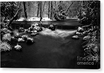 Eisbach In The Winter Canvas Print by Hannes Cmarits