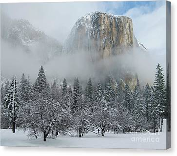 Canvas Print featuring the photograph El Capitan Majesty - Yosemite Np by Sandra Bronstein