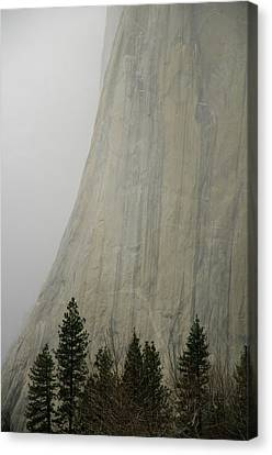 El Capitan, Yosemite National Park Canvas Print by André Leopold