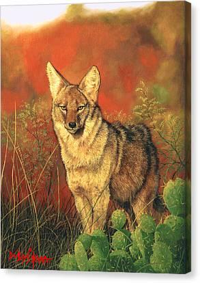 El Coyote Canvas Print