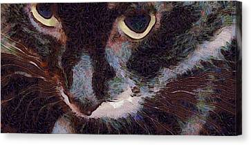 El Gato Canvas Print by Richard Worthington