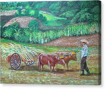 El Paraiso Del Campesino Canvas Print by Luis F Rodriguez