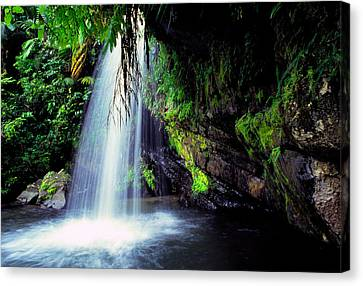 El Yunque Canvas Print - El Yunque Waterfall by Thomas R Fletcher